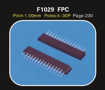 F1029